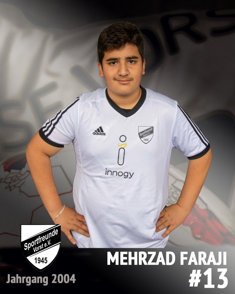 Mehrzad Faraji