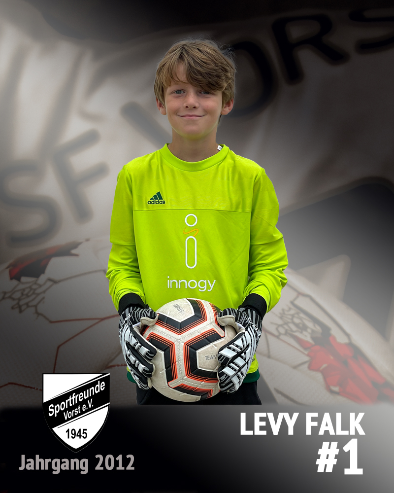 Levy Falk